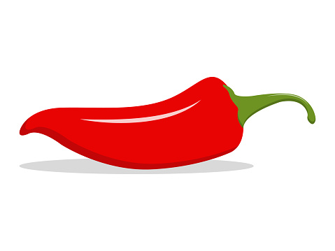 Red hot natural chili pepper illustration. Design for grocery, culinary products, seasoning and spice package, recipe web site decoration, cooking book. Vector Icon