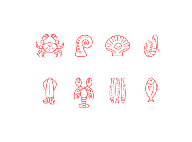 Red linear seafood icon set, flat design Red linear seafood icon set, simple vector symbols collection, flat design ocean animals mollusk stock illustrations