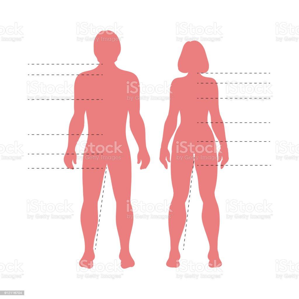 Roter Mann Und Frau Körper Silhouetten Mit Zeigern Vektor ...