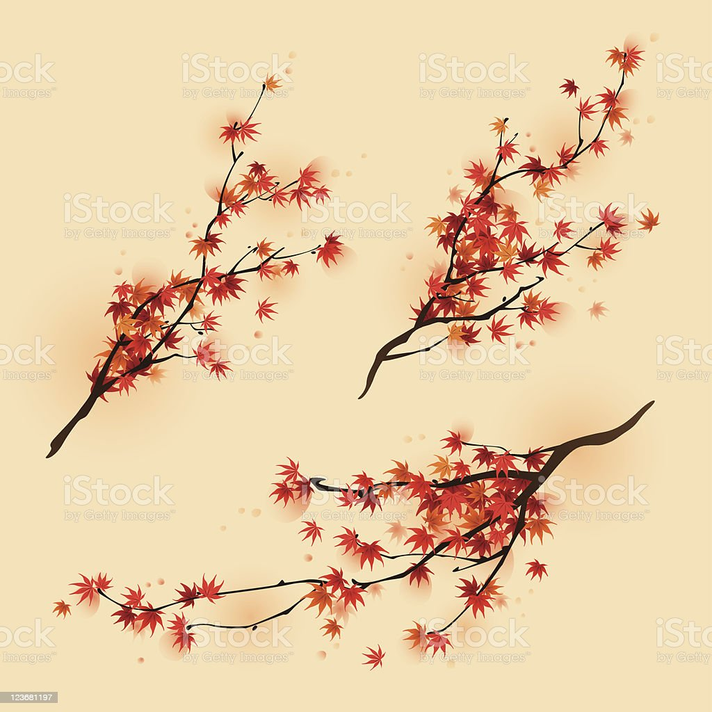 Red maple branches in autumn vector art illustration