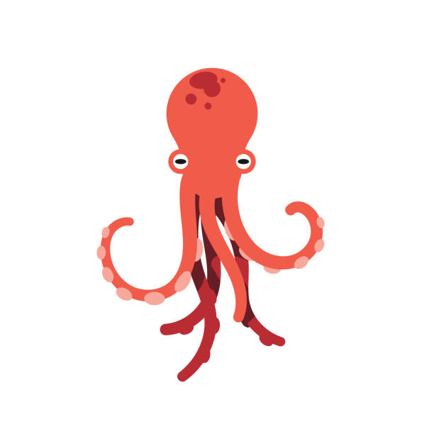red octopus isolated vector illustration on white background. cute octopus vector. marine life and animals concept. cute sea monster, underwater predator - octopus stock illustrations