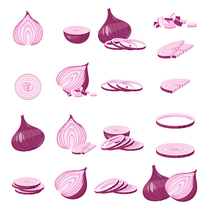 Red Onion Cartoon Illustration Isolated On White Vector ...