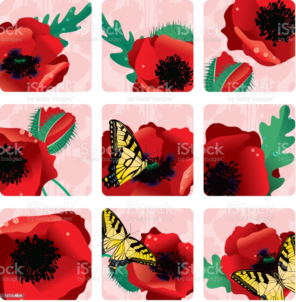 Red Oriental Poppy Squares or Icons royalty-free stock vector art