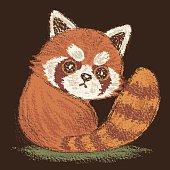 Red Panda look back.