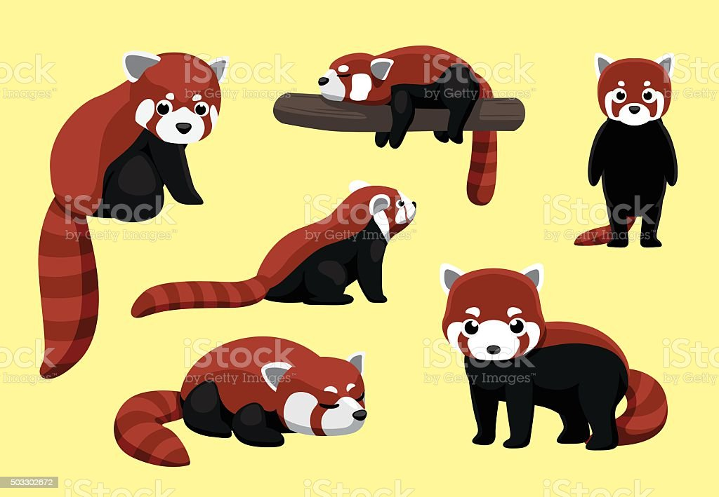 Panda Roux Vecteurs Et Illustrations Libres De Droits Istock