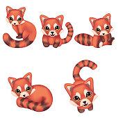 Set Cartoon red panda