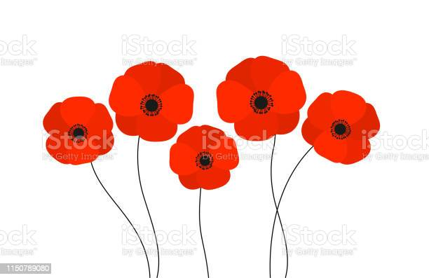 Red poppies flowers isolated on white background vector id1150789080?b=1&k=6&m=1150789080&s=612x612&h=q3mzqbsbkue1sdsnafujambm4rk9i k9cvmx58jaysc=