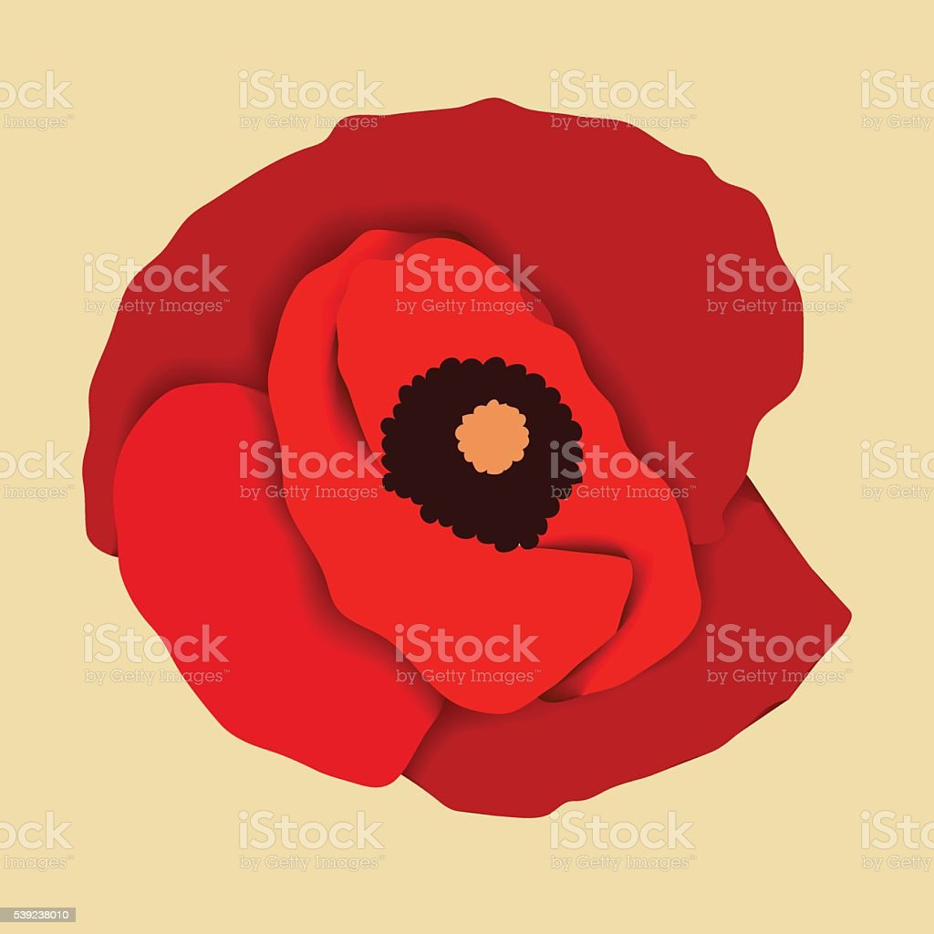 Red poppy flower, top view vector art illustration