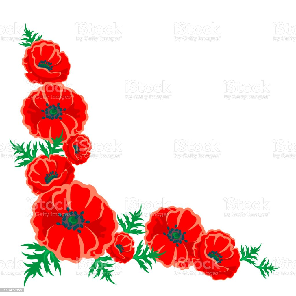 Red Poppy Illustration Vector Left Corner Flower Frame On White ...