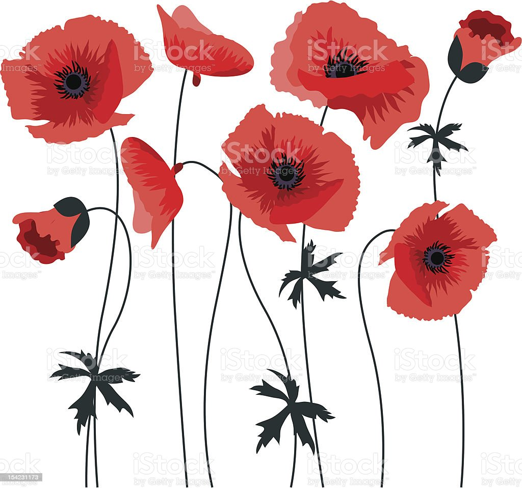 Red poppy royalty-free red poppy stock vector art & more images of decor