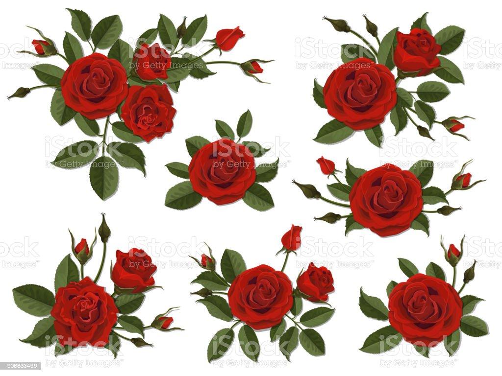 Red rose boutonniere set vector art illustration