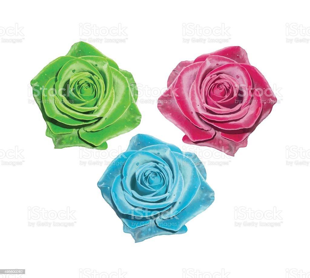 Ilustración De Rosas Rojas Verde Rosa Azul Rosas Y Más Banco De