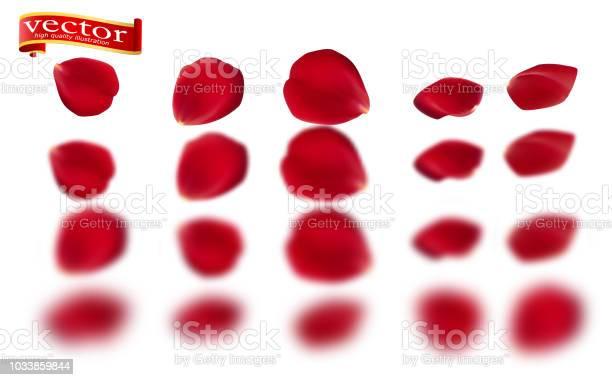 Red rose petals set isolated on white vector illustration red rose vector id1033859844?b=1&k=6&m=1033859844&s=612x612&h=s9wipfblbagezh0ht1ykidbqbddvnhx 4tge1kmfo e=