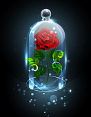 Red, eternal rose under a sparkling crystal dome on a dark background. Red Rose. Vector illustration.