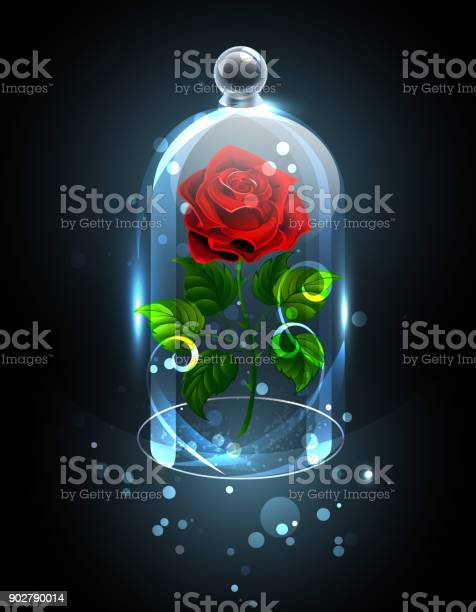 Red rose under the crystal dome vector id902790014?b=1&k=6&m=902790014&s=612x612&h=uy3bogdqakiyxwcekinjaz7eese5eruv1j2bseakica=