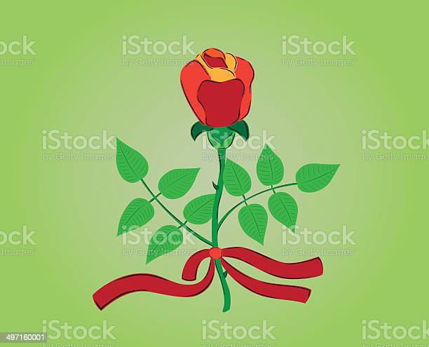Red rose with ribbon vector id497160001?b=1&k=6&m=497160001&s=612x612&h=ecqy1opsvii1x5i3lvag kr2unrgfkpin46cqjeevq4=
