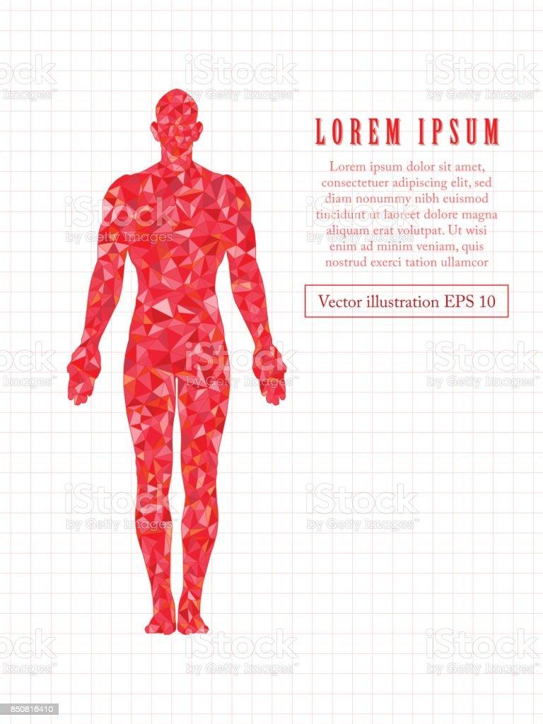 Red standing man, full length. Polygonal vector illustration. vector art illustration