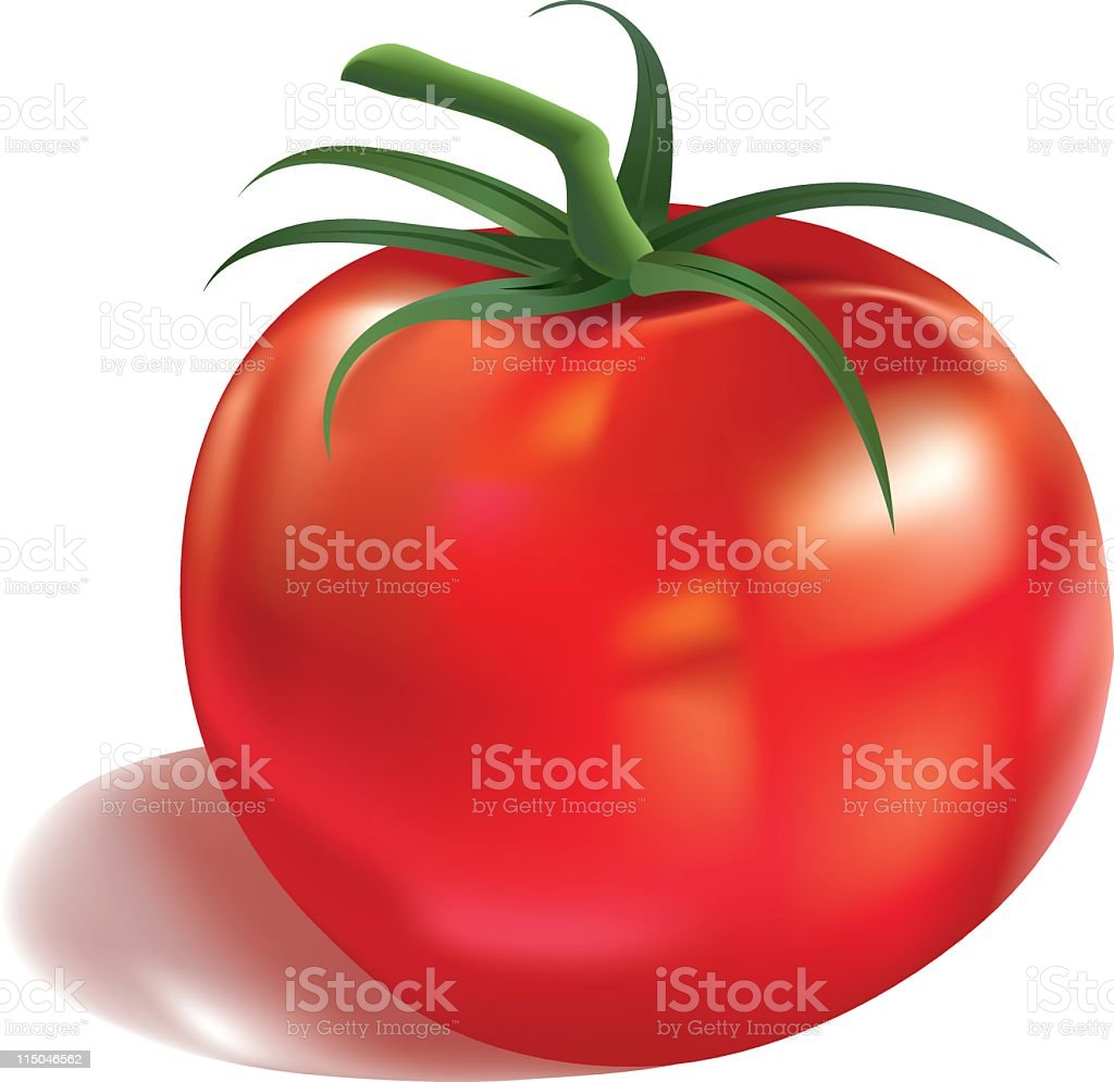 Red Tomato royalty-free stock vector art