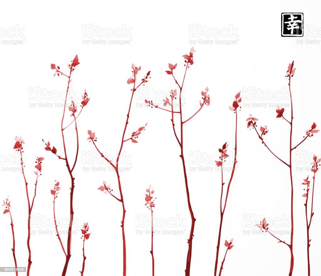 Beyaz Arka Plan üzerinde Taze Yaprakları Ile Kızıl Ağaç Dalları