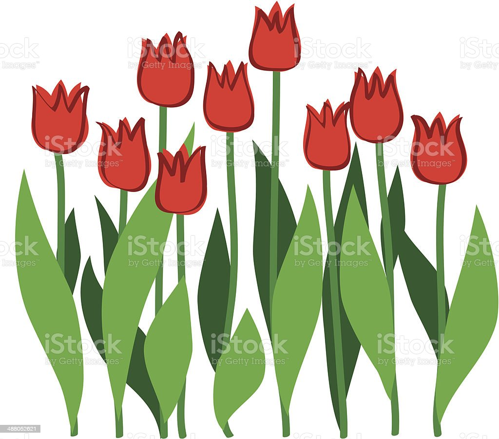 red tulips royalty-free red tulips stock vector art & more images of art
