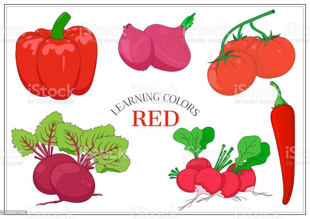 Kırmızı Sebze Kümesi Dolmalık Biber Biber Biber Kırmızı Soğan