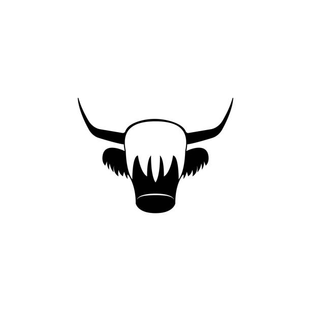Royalty Free Yak Clip Art Vector Images Illustrations Istock