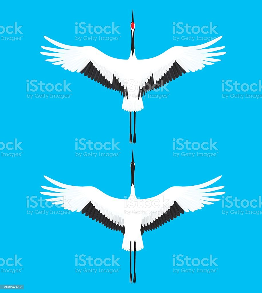 Red-crowned crane. Bird. vector art illustration