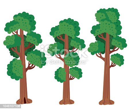Vector Redwood Tree