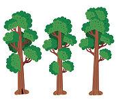 Vector Redwood Tree