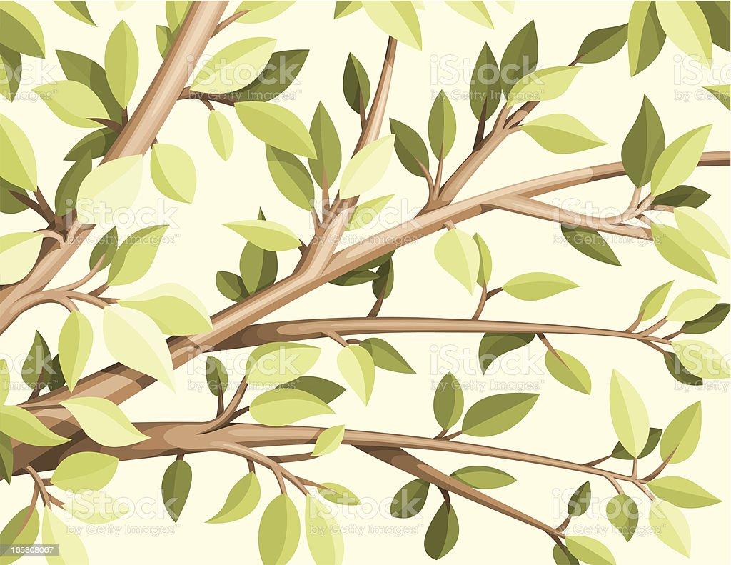 Τree leaves royalty-free stock vector art