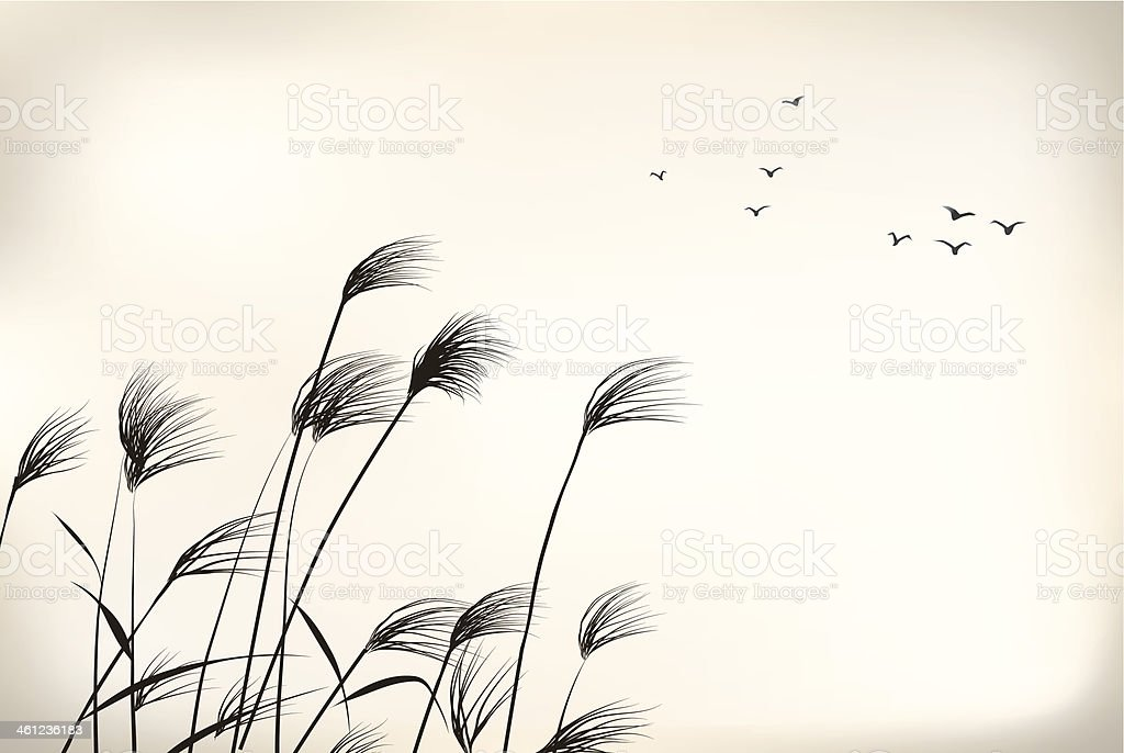 reed painting vector art illustration