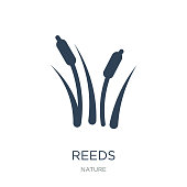 reeds icon vector on white background, reeds trendy filled icons from Nature collection
