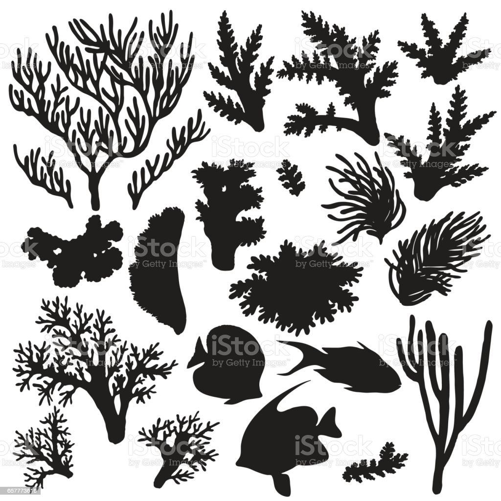 Reef Animals And Corals Silhouette Set Stock Vector Art