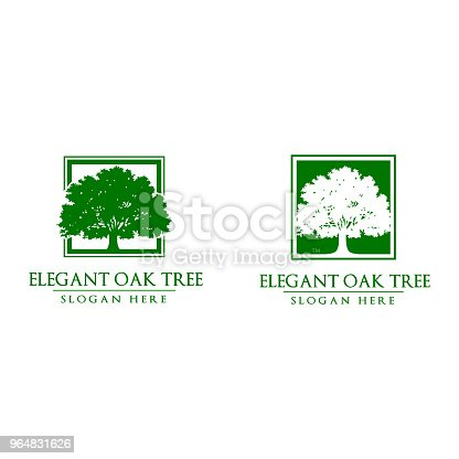 reen Oak Tree