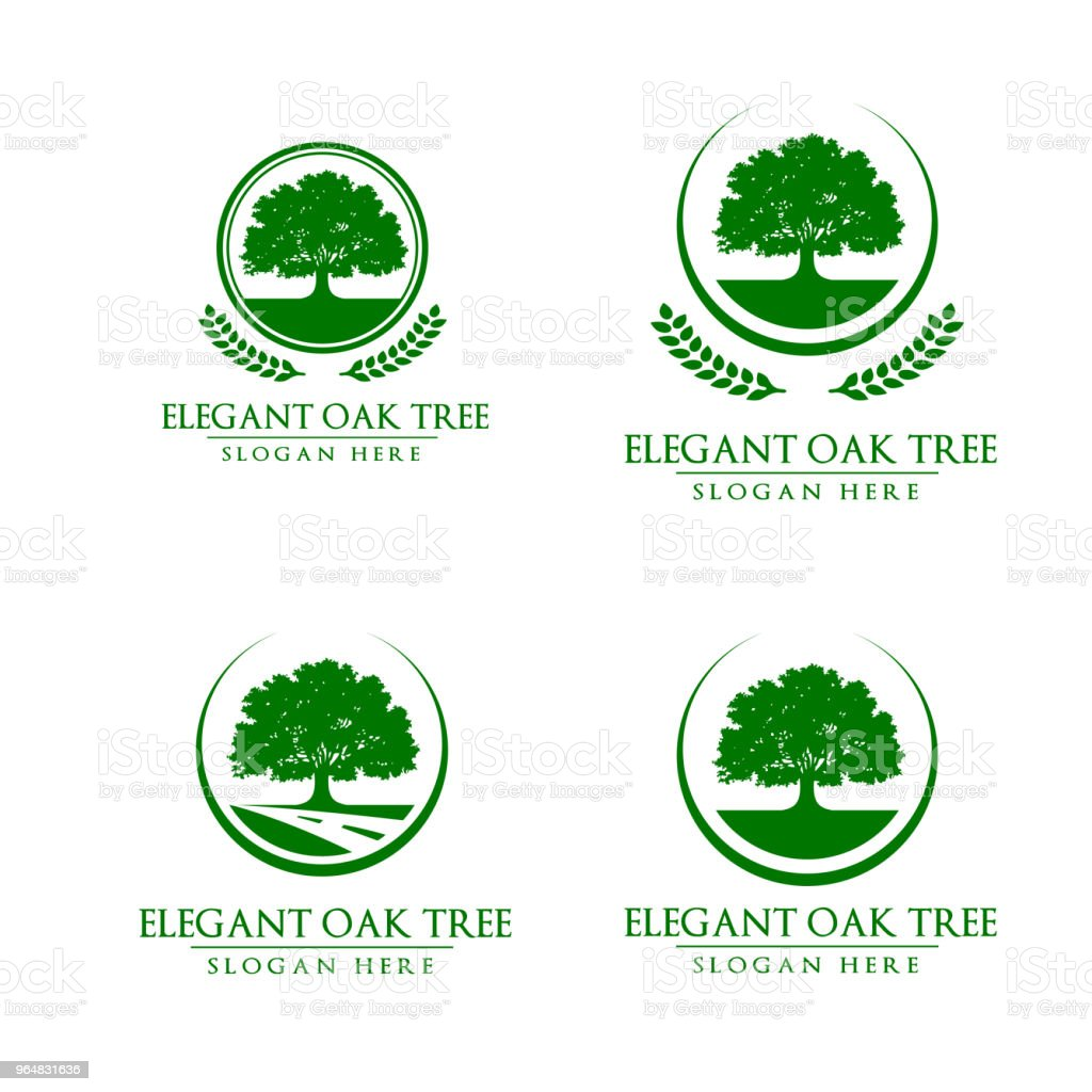 reen Oak Tree Vector Design royalty-free reen oak tree vector design stock vector art & more images of abstract