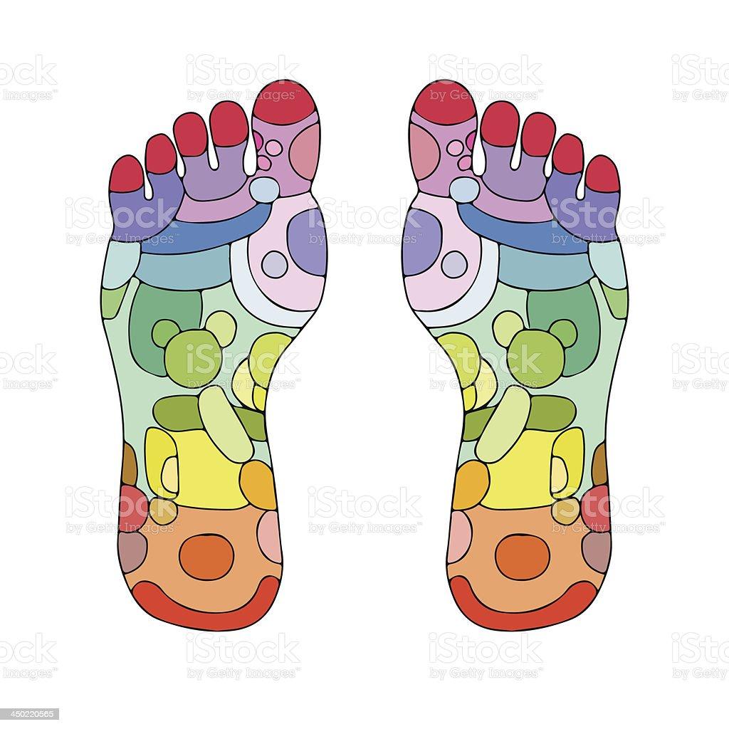 Reflexology foot massage points royalty-free stock vector art