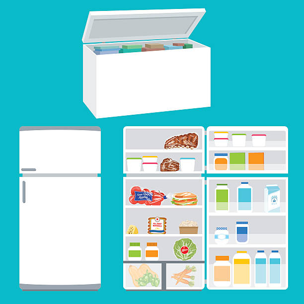 Refrigerator And Freezer Filled With Foods Refrigerator And Freezer Filled With Foods refrigerator stock illustrations