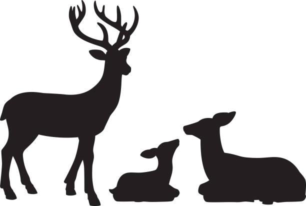 rentier familie silhouetten - hirsch stock-grafiken, -clipart, -cartoons und -symbole