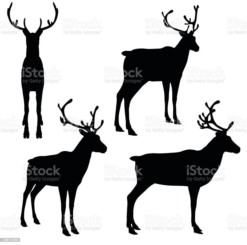 Reindeer on white background vector art illustration
