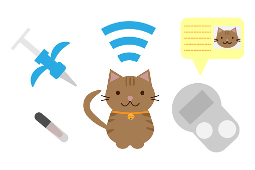 Related tools for cat microchip mounting and cats