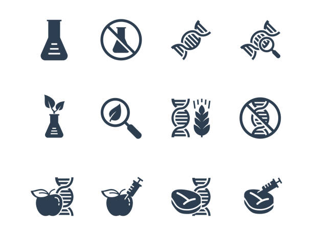 GMO related vector icon set GMO related vector icon set genetic modification stock illustrations