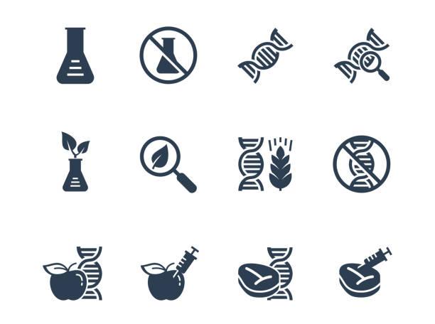 illustrazioni stock, clip art, cartoni animati e icone di tendenza di gmo related vector icon set - chimica