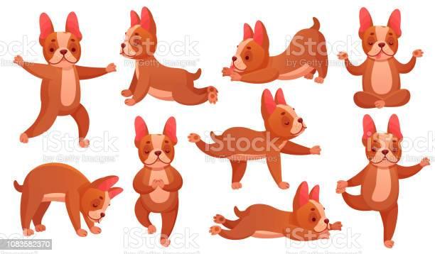 Relax yoga dog animal sport fitness training dogs doing healthy and vector id1083582370?b=1&k=6&m=1083582370&s=612x612&h=dojn1rmylvatqwu7citdvhz4sdtwm0d4c1qck56r2la=