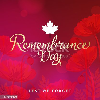 The ceremony of Remembrance Day that honors all military heroes who died in the First World War for the Commonwealth member states, red poppy blooming is a symbol of remembrance and hope for peaceful world