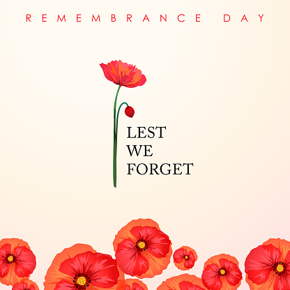 The ceremony of Remembrance Day that honors all military heroes who died in the First World War for the Commonwealth member states, the red poppy is a symbol of remembrance and hope for peaceful world