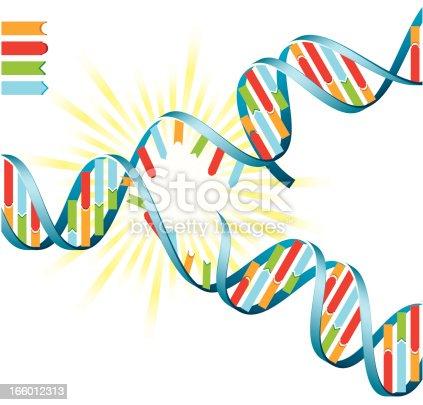 istock DNA Replication 166012313