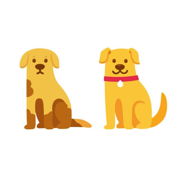 ilustrações de stock, clip art, desenhos animados e ícones de rescue dog before and after adoption - happy dog