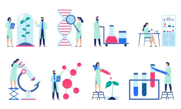 research scientist. science laboratory, chemistry scientists and clinical lab isolated flat vector illustration set - bio tech stock illustrations