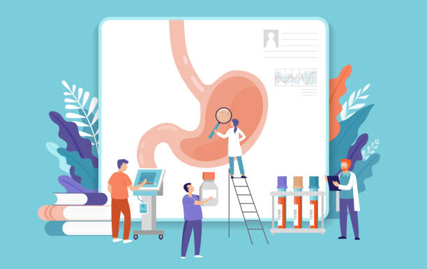 Research scientist. Science laboratory, chemistry scientists and clinical lab. Medical research items, clinical science laboratories experiments. Stomach, gastroscopy test concept vector illustration vector art illustration