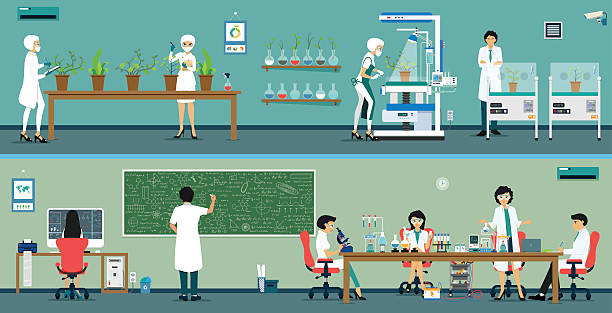 La recherche scientifique - Illustration vectorielle